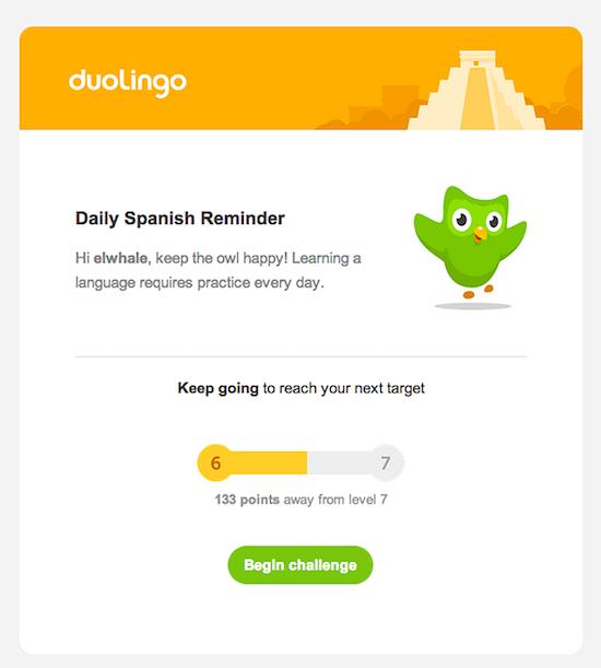 Duolingo reminder email